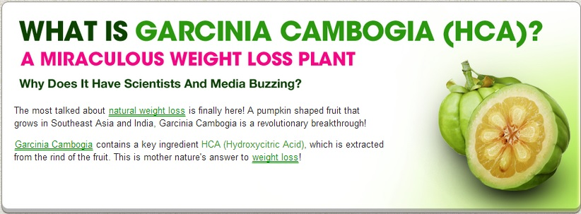 100 Pure Garcinia Cambogia 95 Hca Diet Pills Weight Loss Fat